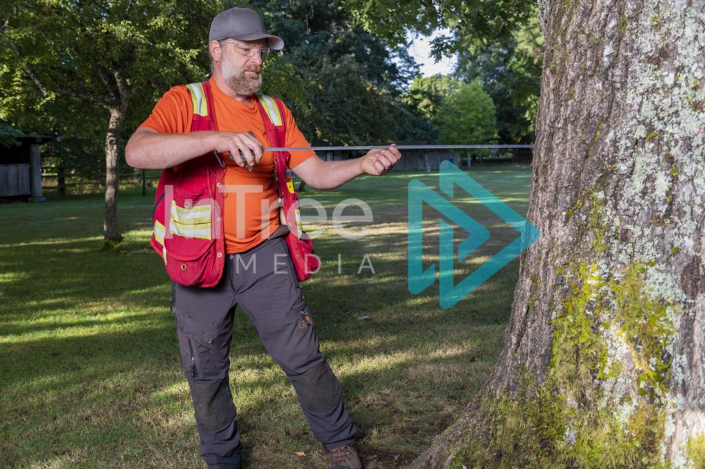 Arborist_Photo_001_21-3464