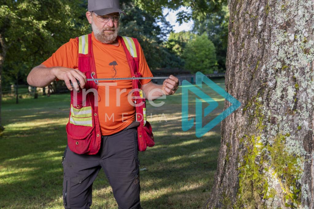 Arborist_Photo_001_21-3465
