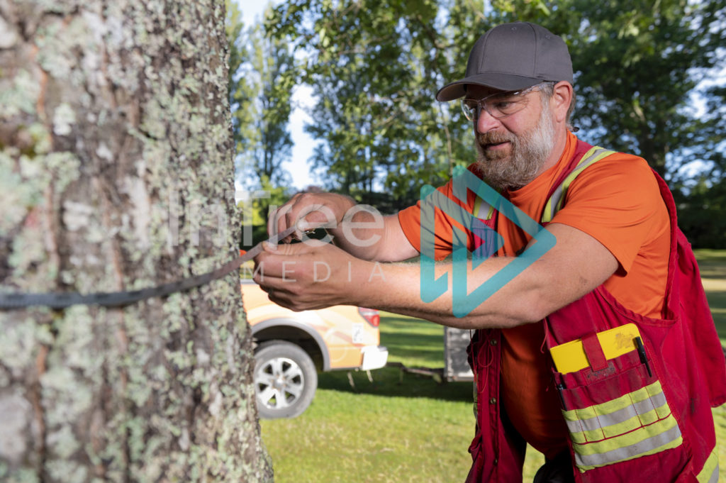 Arborist_Photo_001_21-3477