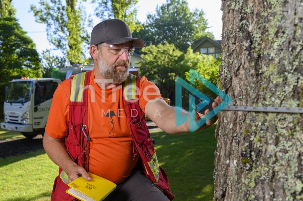 Arborist_Photo_001_21-3484