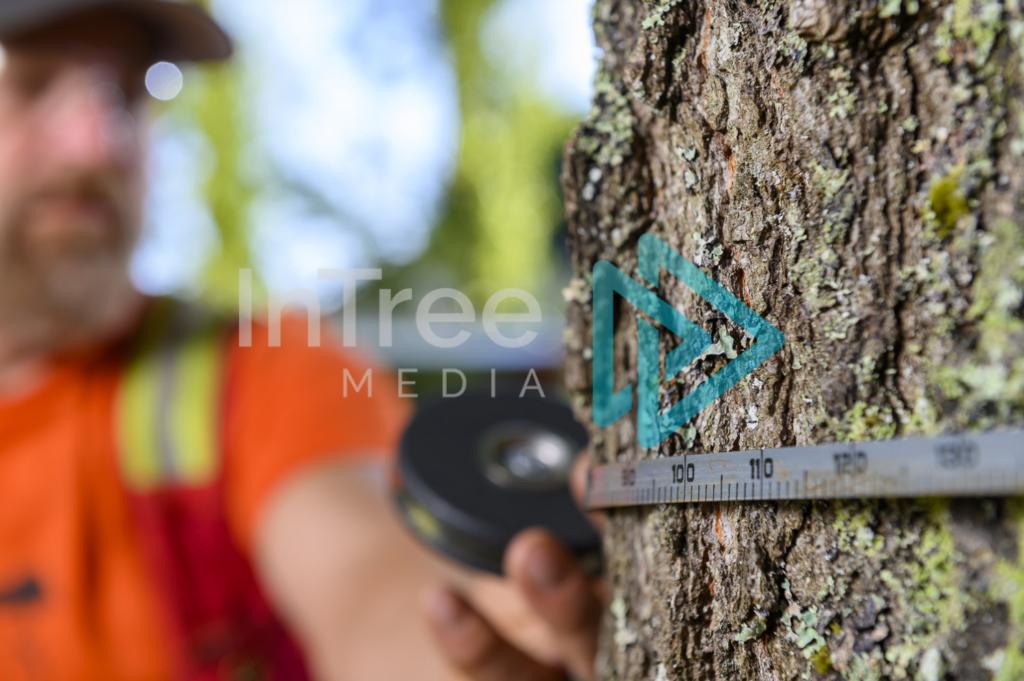 Arborist_Photo_001_21-3486