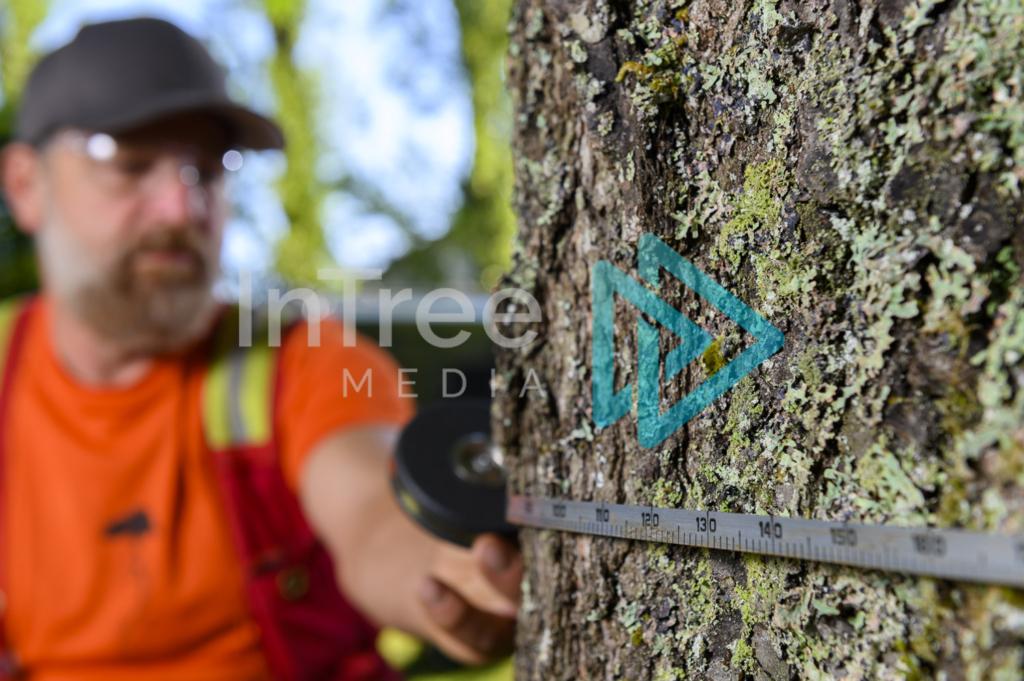 Arborist_Photo_001_21-3487