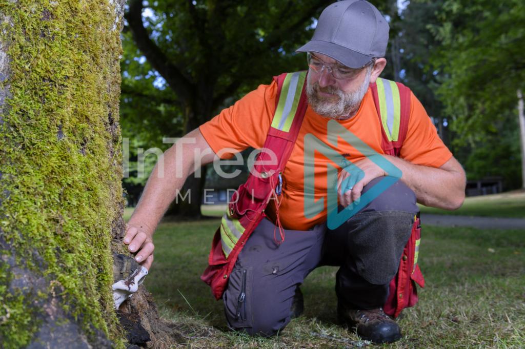 Arborist_Photo_001_21-3552