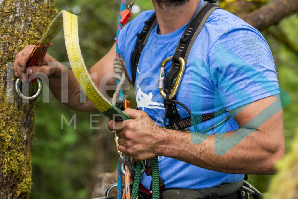 Protected: Climbing_Arborist_ with_friction_saver_in_hands_001_5340