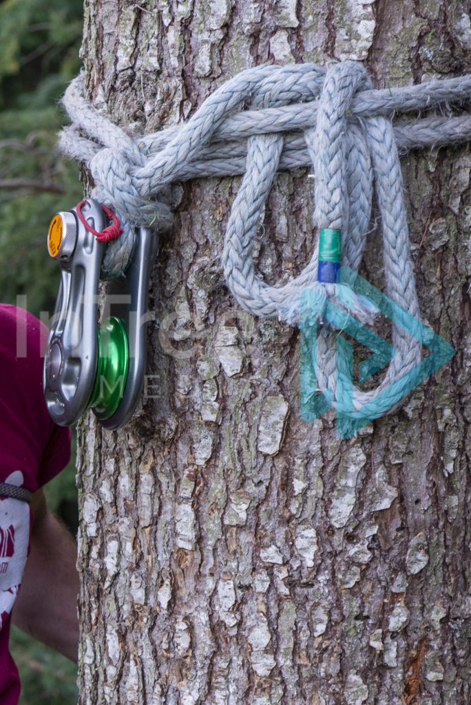 Protected: Rigging_pulley_tied_around_tree_stem_001_1415