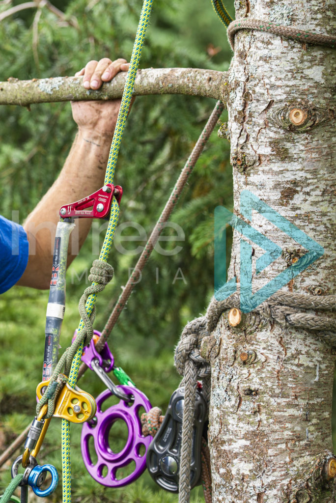 Protected: Tree_climbing_and_rigging_gear_001_1170