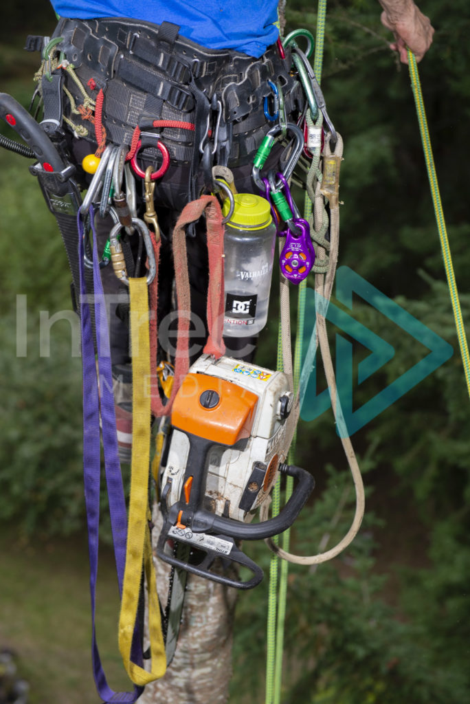 Protected: Tree_climbing_harness_with_chainsaw_001_1269